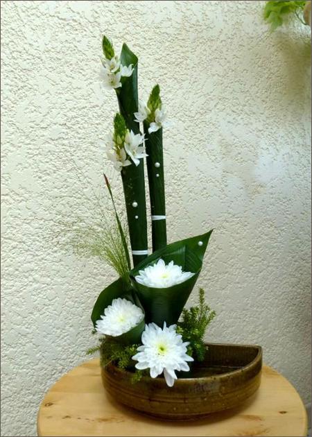 Fleurs en cornets d'aspidistra