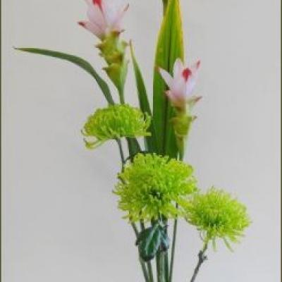 Ikebana sur thèmes